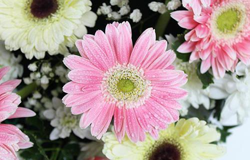 พวงหรีดดอกไม้สดแบบใหม่ของเรา ไม่แพงพร้อมส่ง